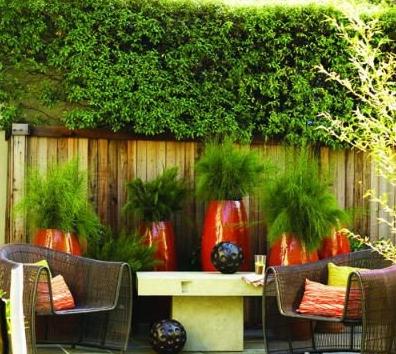 家庭豪华花园设计
