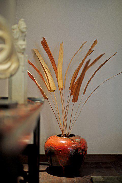 中式风格客厅植物效果图