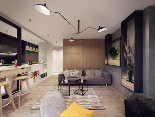 华沙公寓现代风格客厅图片
