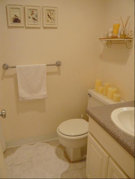 混搭开放式公寓卫生间图片