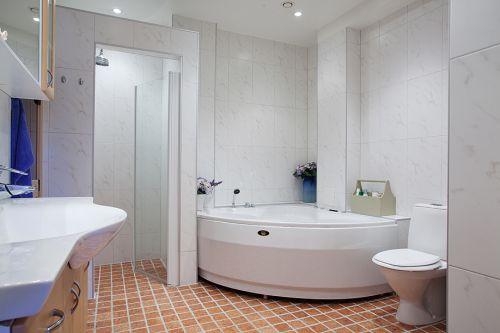 欧式简洁卫生间实景图片