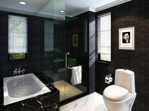 混搭卫生间淋浴房设计案例展示