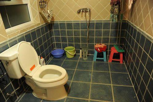 混搭卫生间图片