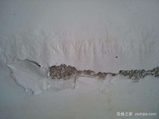 暴雨天让墙面返潮更严重 还有这些妙招应对返潮问题
