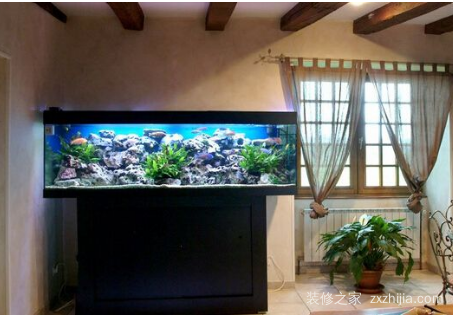 家里鱼缸该怎么摆放位置风水?