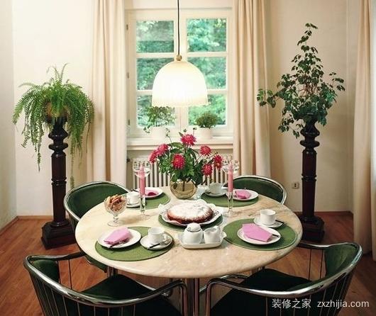 家居风水植物