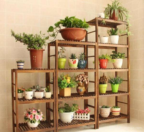 室内木制花架