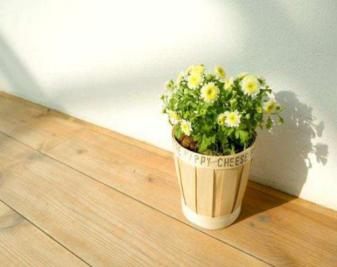 环保地板真的环保吗?如何鉴别环保地板?