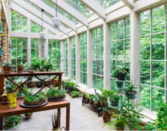阳光房适合种哪些植物?阳光房植物摆放宜忌