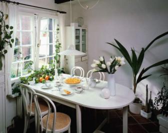 怎么看餐厅植物风水?哪些植物适合餐厅风水?