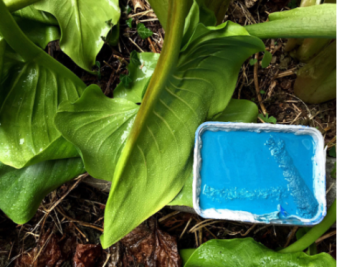 什么是植物涂料?植物涂料有哪些优势?