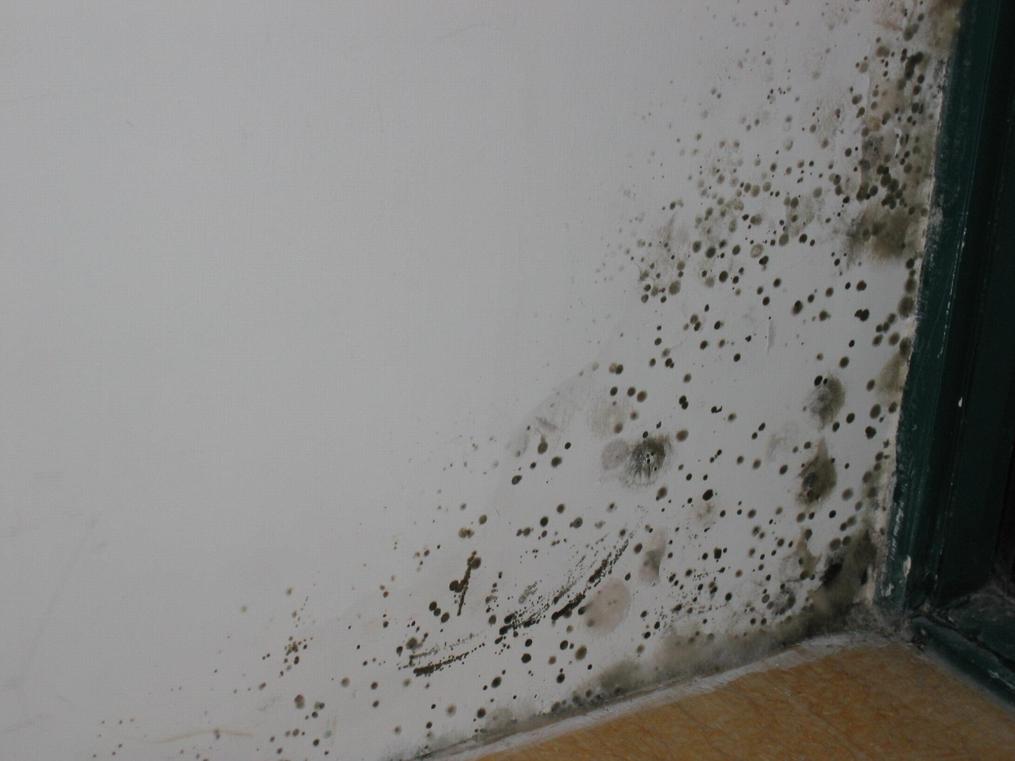墙壁粉刷步骤有哪些?墙壁粉刷注意事项