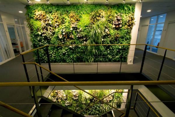 阳台植物墙设计原则 阳台植物墙常识介绍