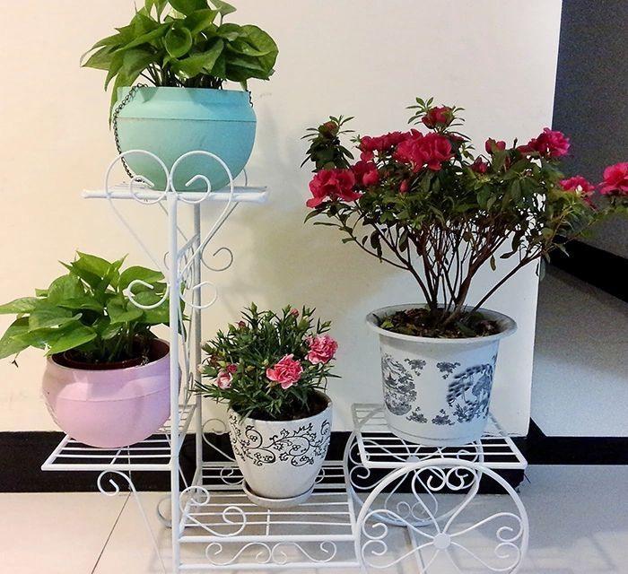 花盆花架有哪些优点 花盆花架选购注意事项
