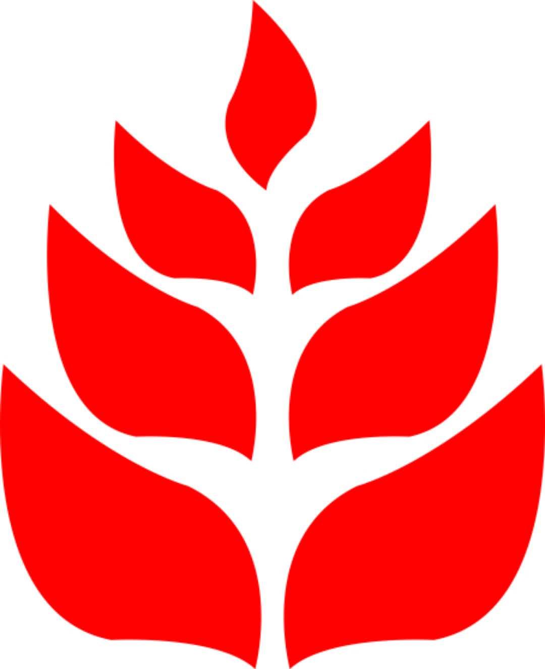 河南贰玖合赢装饰装修工程有限公司 - 郑州装修公司