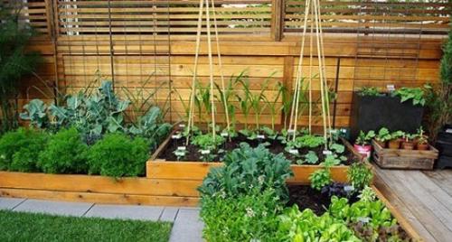 家庭小花园装饰