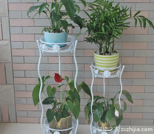 阳台花架选择,给花儿一个舒适美丽的家