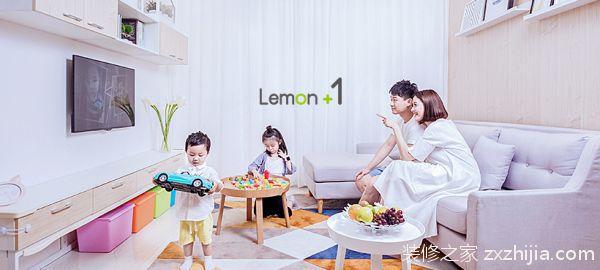 关于柠檬树装修的理念