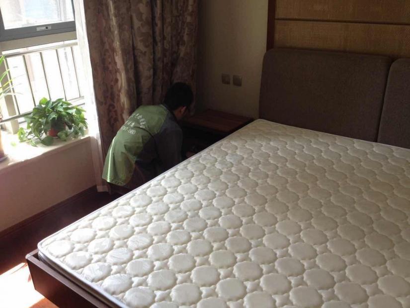 家装除甲醛的方法 除甲醛公司有必要吗