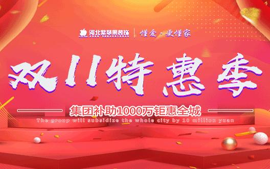 河北紫苹果装饰双十一特惠季