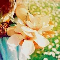 水晶花之雨